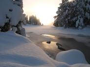 Nordic looking Loch An Eilein