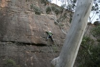 Greg climbing at Shipley Upper, Blue Mountains