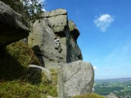 Chiseller, Ilkley, Cow and Calf