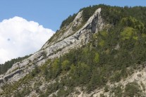 The VF route follows the ridge up to the trees, with the walkout back behind.