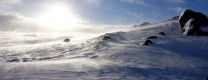Scottish Tundra
