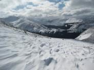 Scottish Snow