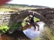 bridgering