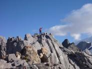 top of Kingspitze