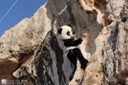 First costumed ascent of Shirini!?<br>© Simon Alden
