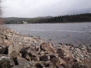 Lake bagging at Loch Laggan, a 2 pointer.
