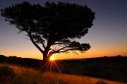 Sunrise over Serra de Montsant<br>© ali k