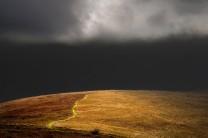 Bright shaft of sunlight catches a grassy track on Mynydd Llangorse