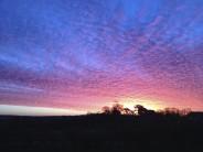 Wiltshire downs