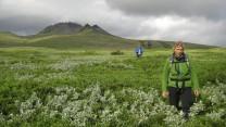 Kristinatindur, Skaftafell National Park, Iceland