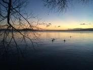 Dawn rising over Lake Rotorua, NZ - morning run past the fumaroles