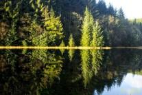 Lyn Y Parc Reflections
