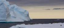 Adelie and Iceberg