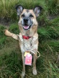 Milly rightly chuffed with her golden nut at ramshaw crack