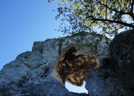 Top section of Ser szwajcarski.