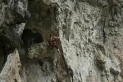 Confidence at Banyangs Cave, Getu China<br>© Kipper-Phil Smith