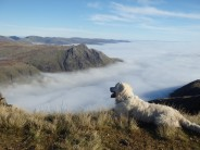 Can't beat this for a fell run when you get scenes like this.