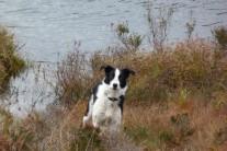 Bob enjoying the scottish lochs and hills.