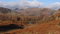 Langdale Pikes seen from Holme Fell.