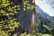 The classic El Schupo at Zillertal, Austria.<br>© John Thornton