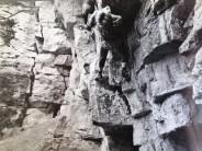 Old climbing photo, Leckhampton Hill