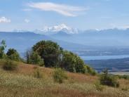 Mont Blanc from across Lake Geneva