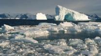 Polar Ice Floes