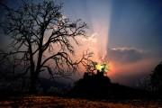 Sunset. Robin Hood's Stride<br>© chris_jackson