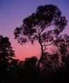 Arapiles by sunset<br>© Dan Matthewman