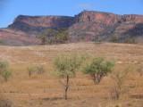 Moonarie, on the SE side of Wilpena Pound, Flinders Range, South Australia<br>© Steve Bell