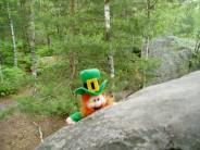 A bouldering irish man, Apremont
